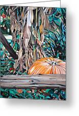 Pumpkin Greeting Card by Anthony Mezza