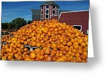 Pumpkin Heaven Greeting Card by David Schneider
