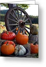 Pumpkin Wheel Greeting Card by Kerri Mortenson
