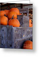 Pumpkins On The Wagon Greeting Card by Kerri Mortenson