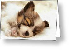 Puppy Nap Greeting Card by Gun Legler