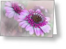 Purple Blooms Greeting Card by David and Carol Kelly