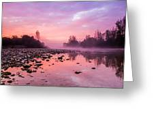 Purple Dawn Greeting Card by Davorin Mance