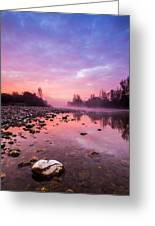 Purple Dawn Greeting Card by Davorin Mance