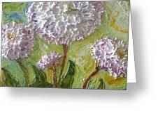Purple English Daisy Greeting Card by Paris Wyatt Llanso