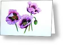 Purple Oriental Poppies Greeting Card by Karin  Dawn Kelshall- Best