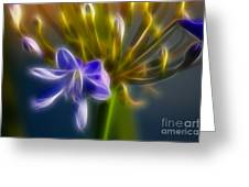 Purple Passion 6318-fractal Greeting Card by Gary Gingrich Galleries