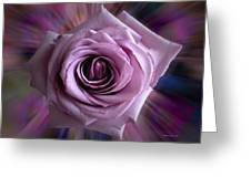 Purple Rose Greeting Card by Thomas Woolworth