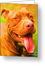 Pit Bull Portrait Greeting Card by Iain McDonald