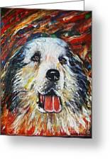 Pyrenean Mountain Dog Greeting Card by Anastasis  Anastasi