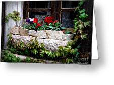Quaint Stone Planter Greeting Card by Lainie Wrightson