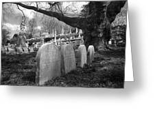 Quiet Cemetery Greeting Card by Jennifer Lyon