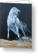 Quitapenas On The Run Greeting Card by Janina  Suuronen