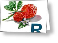 R Art Alphabet For Kids Room Greeting Card by Irina Sztukowski