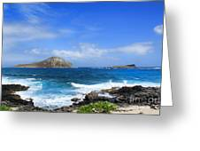 Rabbit Manana Island Oahu Hawaii Greeting Card by Leslie Kirk