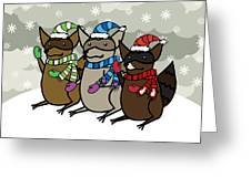 Raccoons Winter Greeting Card by Christy Beckwith