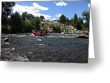 Rafting The River Greeting Card by Steven Parker
