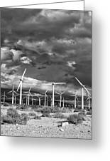 Rage Of The Wind Palm Springs Greeting Card by William Dey