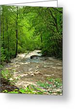 Raging Waters - West Virginia Backroad Greeting Card by Paulette B Wright
