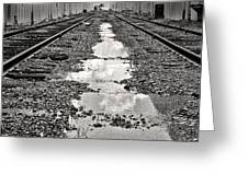 Railroad 5715bw Greeting Card by Rudy Umans