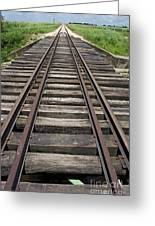 Railroad Tracks Greeting Card by Sami Sarkis