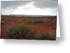Rain at Monument Valley Greeting Card by Heather Coen