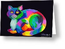 Rainbow Calico Greeting Card by Nick Gustafson