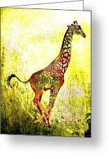 Rainbow Giraffe Greeting Card by Daniel Janda