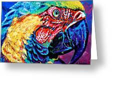 Rainbow Macaw Greeting Card by Maria Arango