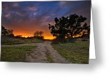 Rancho Santa Fe Sunset Greeting Card by Larry Marshall