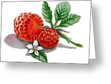 Raspberries  Greeting Card by Irina Sztukowski