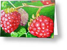 Raspberry Ripening Greeting Card by Lorraine Fenlon