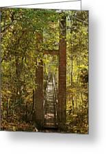 Ravine Gardens State Park In Palatka Fl Greeting Card by Christine Till