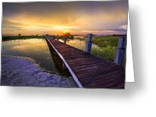 Reaching Into Sunset Greeting Card by Debra and Dave Vanderlaan
