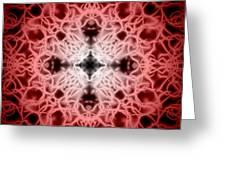 Red Greeting Card by Adam Romanowicz