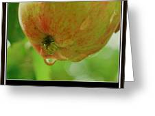 Red And Green Apple In Bokeh Greeting Card by Rosemarie E Seppala