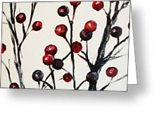 Red Berry Study Greeting Card by Rebekah Reed