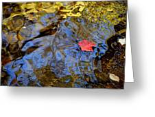 Red Blue And Gold Greeting Card by Frozen in Time Fine Art Photography