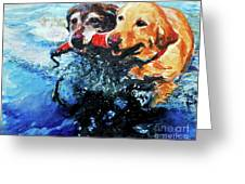 Red Bumper Greeting Card by Molly Poole
