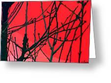 Red Greeting Card by Carol Lynch
