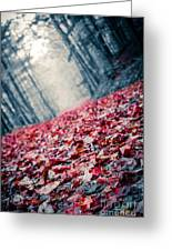 Red Carpet Greeting Card by Edward Fielding