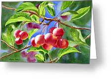 Red Crab Apples With Background Greeting Card by Sharon Freeman