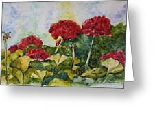 Red Geraniums Greeting Card by Patsy Sharpe