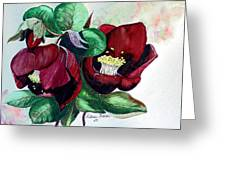 Red Helleborous Greeting Card by Karin  Dawn Kelshall- Best