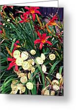 Red Lilly's Greeting Card by Martha Yates
