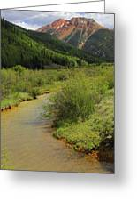 Red Mountain Creek - Colorado  Greeting Card by Mike McGlothlen