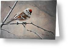 Red Poll Greeting Card by Pam Kaur