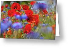 Red Poppies In The Maedow Greeting Card by Heiko Koehrer-Wagner