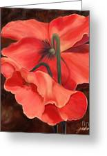Red Poppy Three Greeting Card by Joan A Hamilton