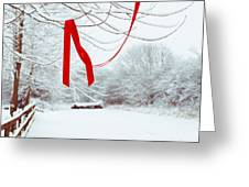 Red Ribbon In Tree Greeting Card by Amanda And Christopher Elwell